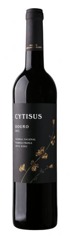 Cytisus